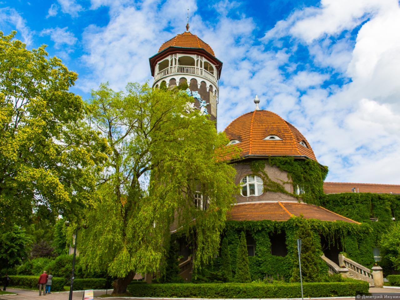 Балтийск, Янтарный и Светлогорск - индивидуальная экскурсия в Калининграде от опытного гида