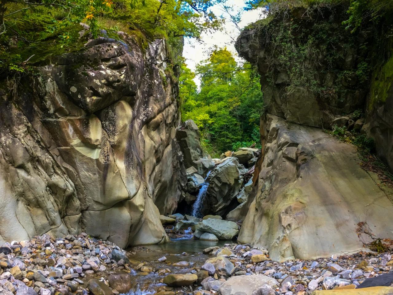 Притоки реки Псезуапсе - индивидуальная экскурсия в Лазаревском от опытного гида