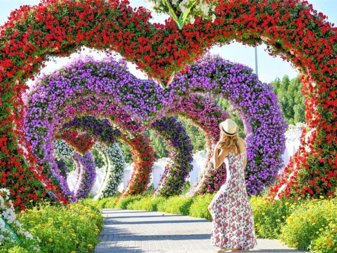 Парк Цветов — Dubai Miracle Garden - индивидуальная экскурсия в Дубае от опытного гида