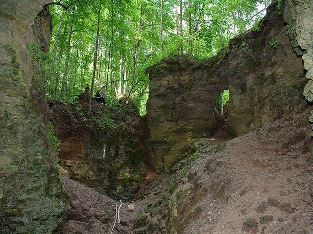 Ичалковский бор — наследие Ледникового периода