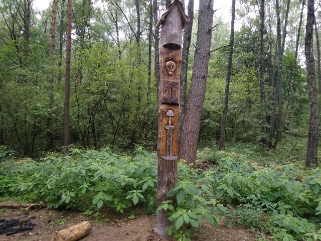 Тайны Гнездовского леса