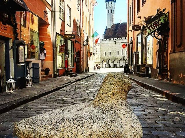 Таллин — средневековая столица Европы