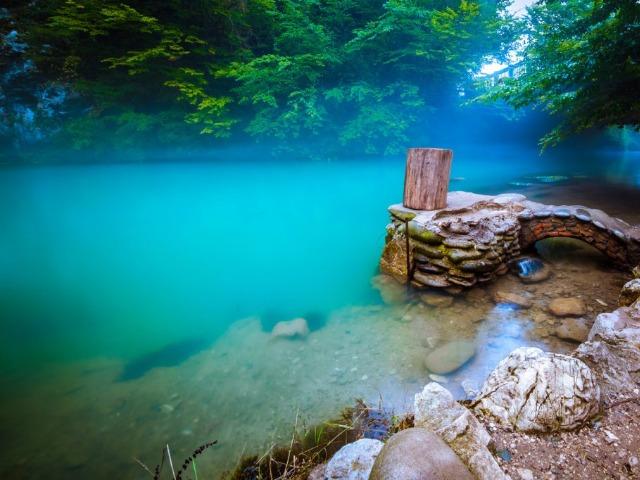 Абхазия: посетить море и горы за 1 день