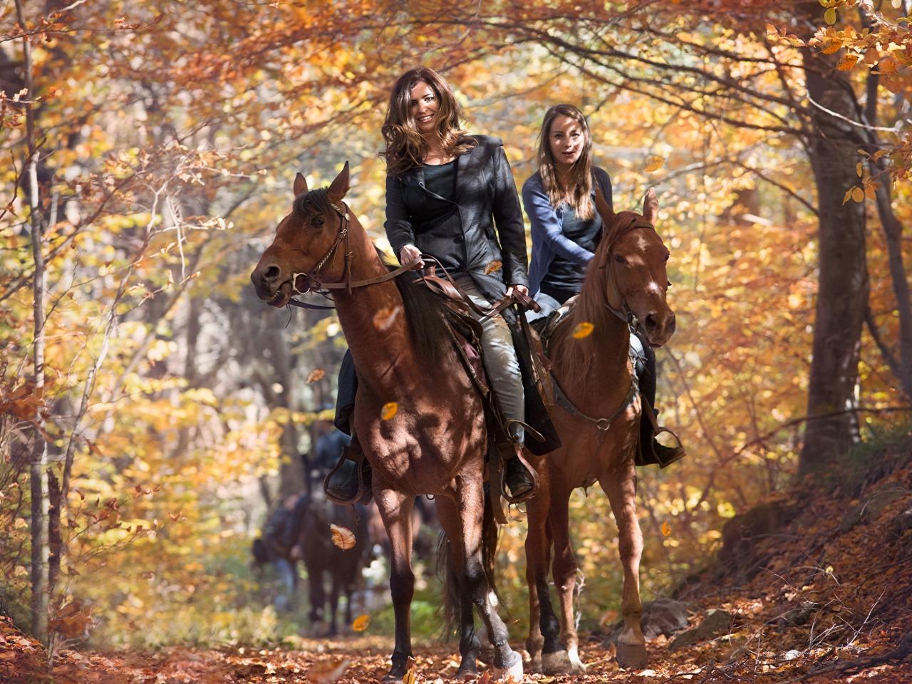 Кахетия: прогулка на лошадях по Кавказскому хребту - индивидуальная экскурсия в Тбилиси от опытного гида