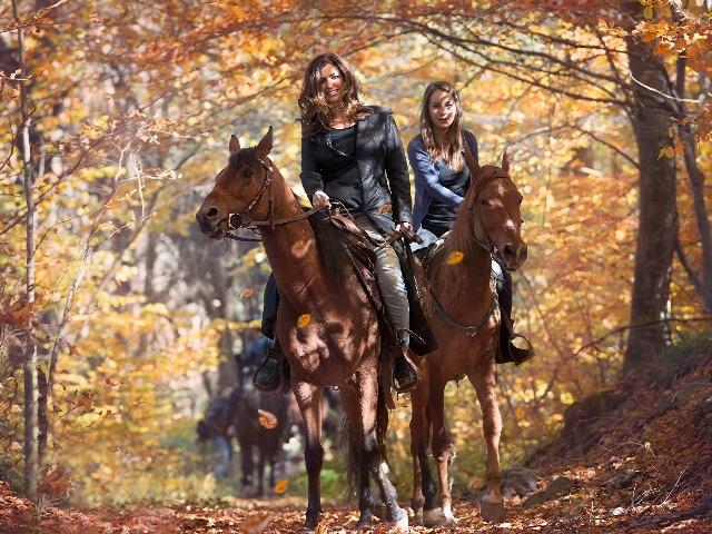 Кахетия: прогулка на лошадях по Кавказскому хребту