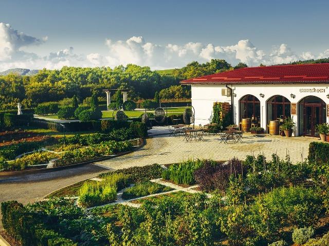 Винно-гастрономический тур на винодельню Лефкадия