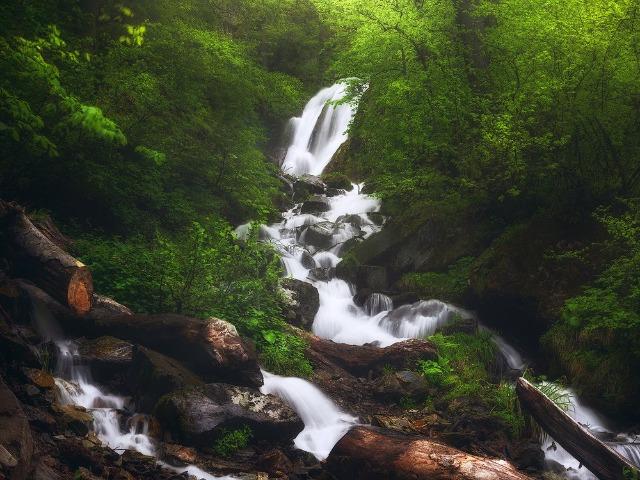 Треккинг-лайт к водопаду Кейва в Красной Поляне