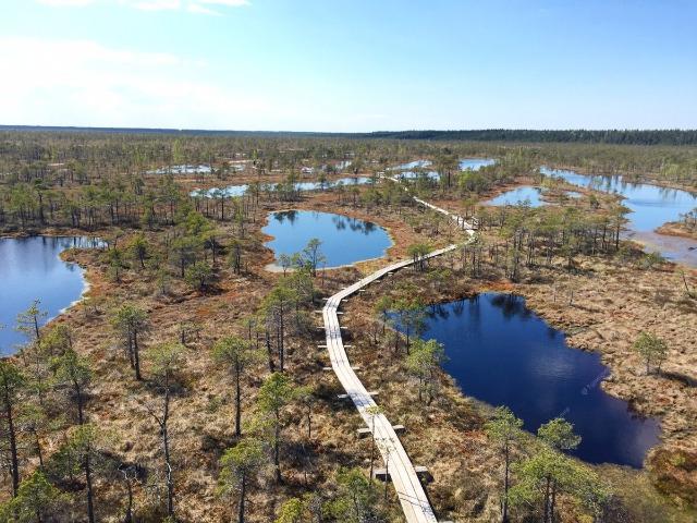 Природная тропа Большого Кемерского болота
